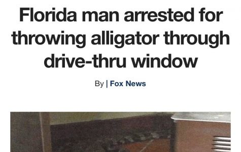 The Florida Man Tag May Be The Funniest Thing I've Ever Seen