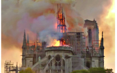 What Happened to The Notre Dame Cathedral?