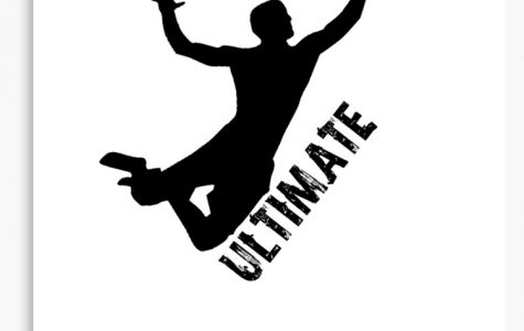 DHS: Ultimate Frisbee Tournament