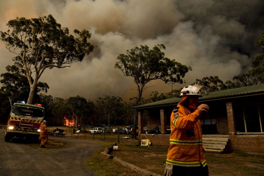 Please+Help+the+Victims+of+Australia%27s+Fires