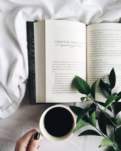 Hey Alexa- What Should I Read?