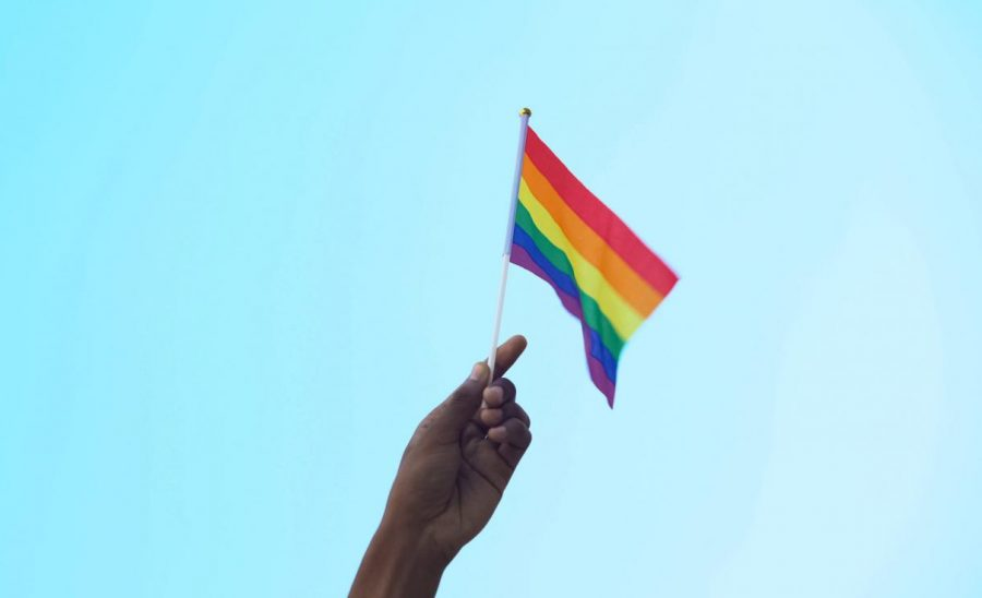 Supporting and Advocating for LGBT+ Students