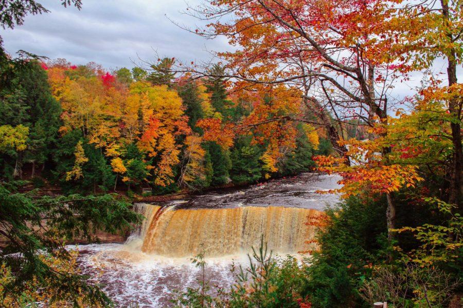 Jump into Autumn!